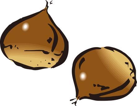 Chestnut, sweet chestnut