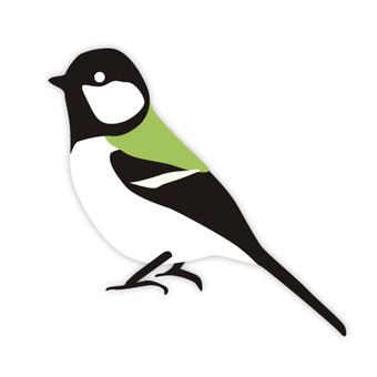 Tit tits (familiar birds)