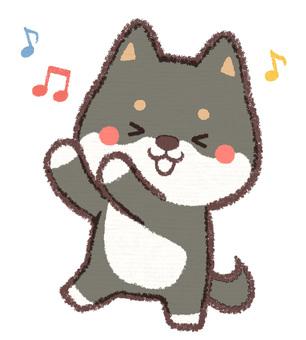跳舞黑色柴犬