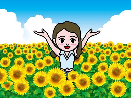 Sunflower field (15) Banzai Girls A