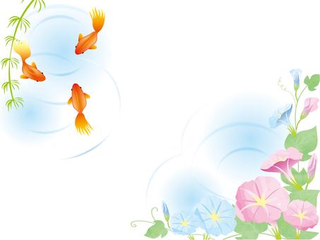 Goldfish and morning glory 1