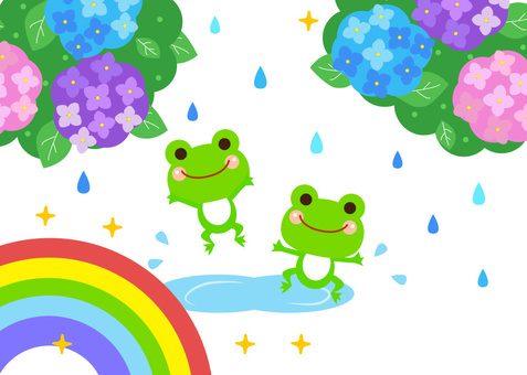 Frogs and hydrangeas