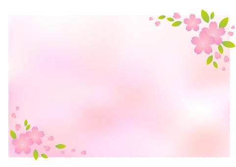 Cherry blossom material 59