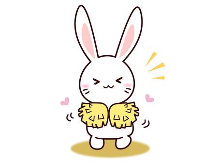 Rabbit (support)