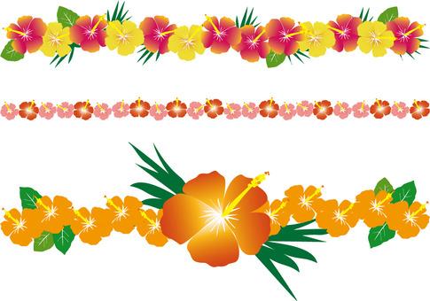 Hibiscus Line