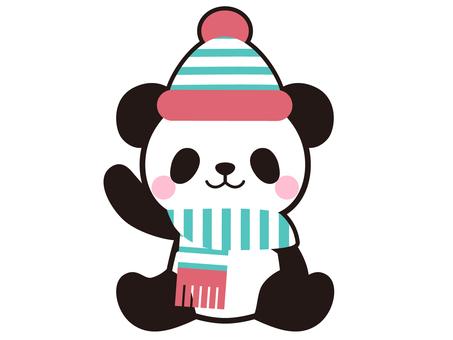 冬天的熊貓