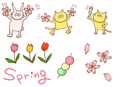 Spring material summary