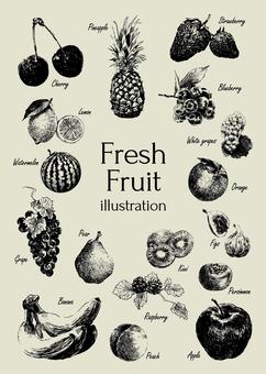 新鮮的水果插圖