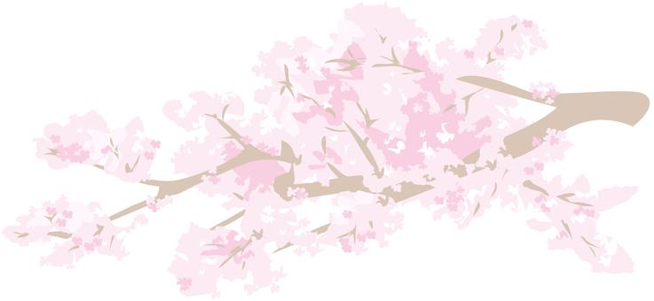 Sakura branch part