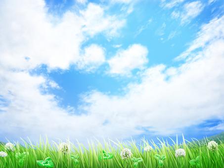 Lawn White Dragonfly Aozora background · Wallpaper frame