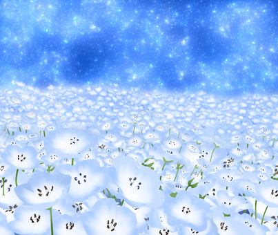 Nemophila and the starry sky