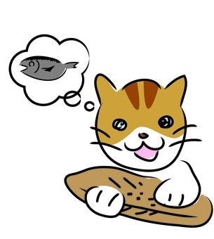 A cat on a cat