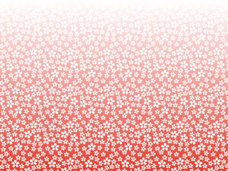 花卉圖案1