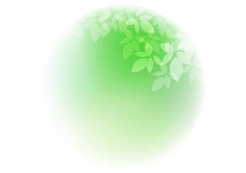 Fresh green material 75