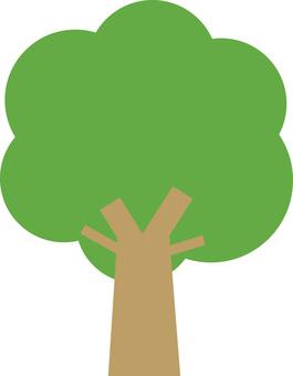 木(wood)