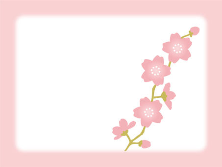 Cherry blossoms message 1