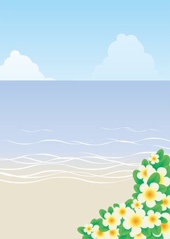 Plumeria background, A4 length, with feet