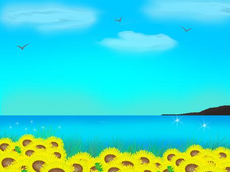 Sunflower field and summer sea