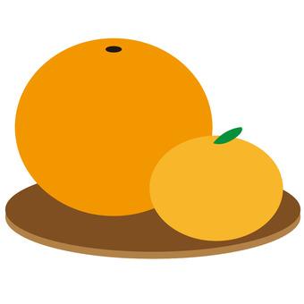 Illustration-like oranges and oranges