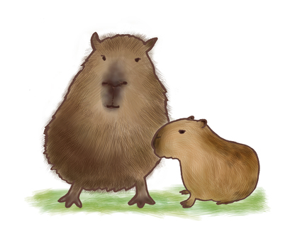 Capybara parent and child