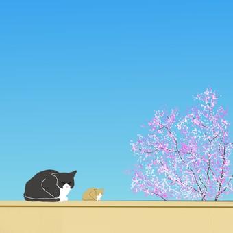 一隻貓和一棵櫻桃樹的父母和孩子