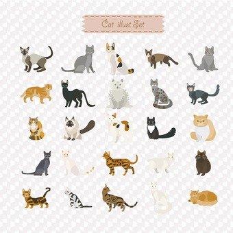 बिल्लियों