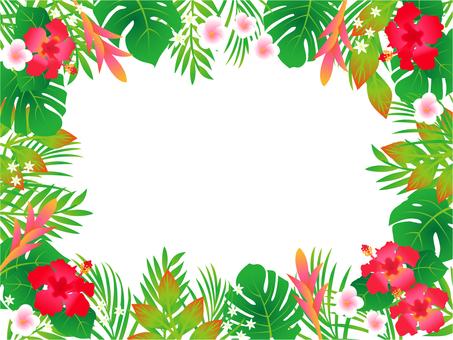 열대 꽃 프레임