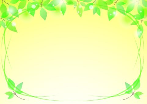 新鲜的绿色