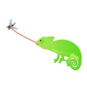 Chameleon 3