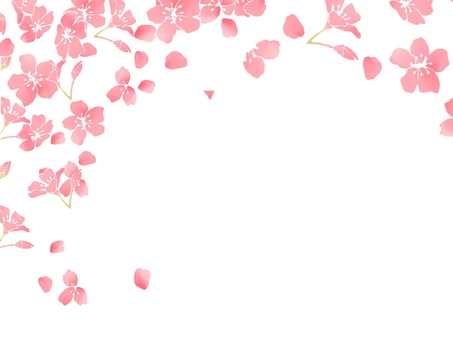 Cherry blossoms (wallpaper) 3