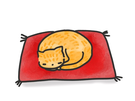 Cat sleeping on a cushion