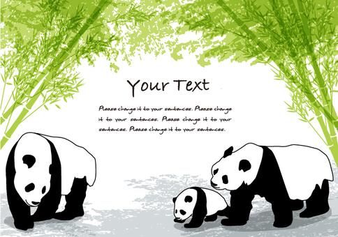 대나무 그늘과 팬더 메시지 카드 A