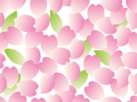 Petal background (white background