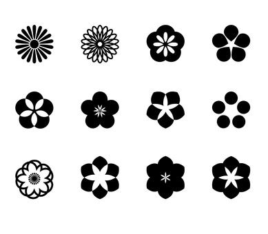 Flower _ monochrome