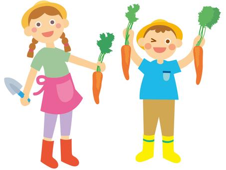 Harvesting vegetables _ Children
