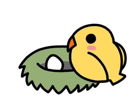 Bird's nest yellow