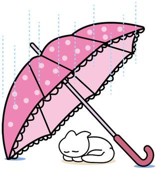 우산과 고양이