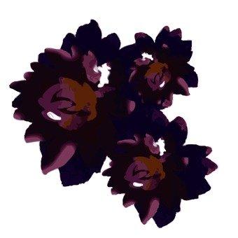 보라색의 꽃