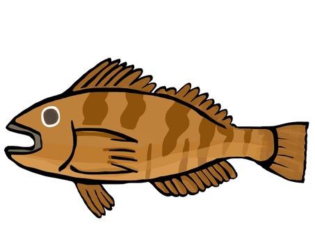 Fish Ainame