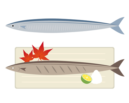 Saury illustration set