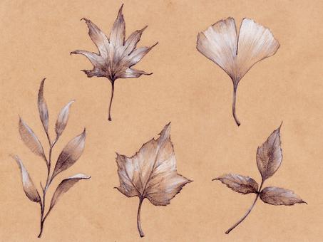 Material ~ Autumn scenery ~