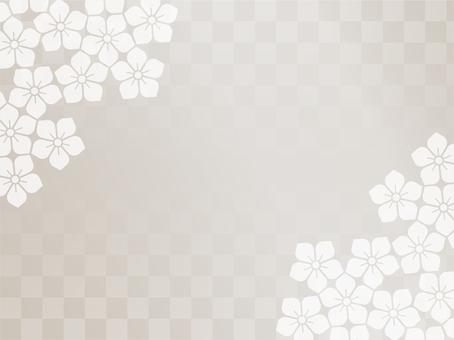 Zephyr wallpaper - bellflower