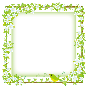 Green and white flower decorative frame