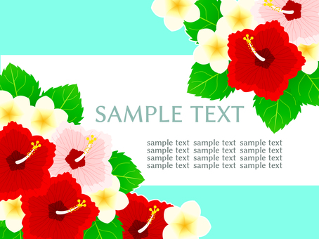 Hibiscus Background 02