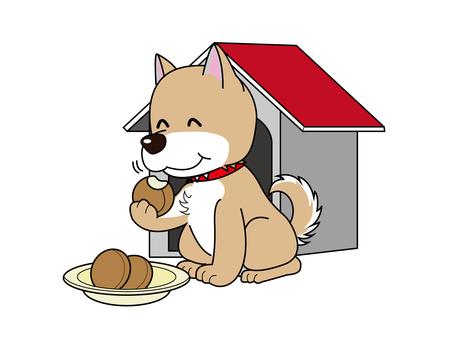 강아지 식사 중