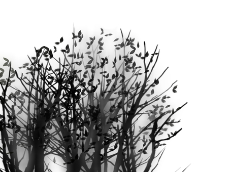 Sumi-style wind grove
