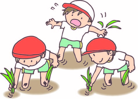 Rice planting experience