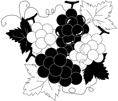 Grape black and white