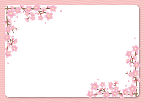 Cherry Blossoms Frame 2 (Pink × White)