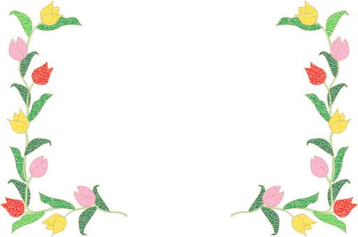 鬱金香框架(側身)